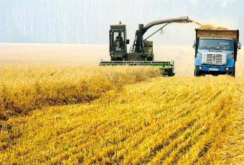 中俄农产品贸易额持续增长